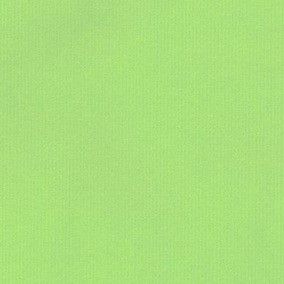 Cadeaupapier Duo Color Fluor Green 70cm